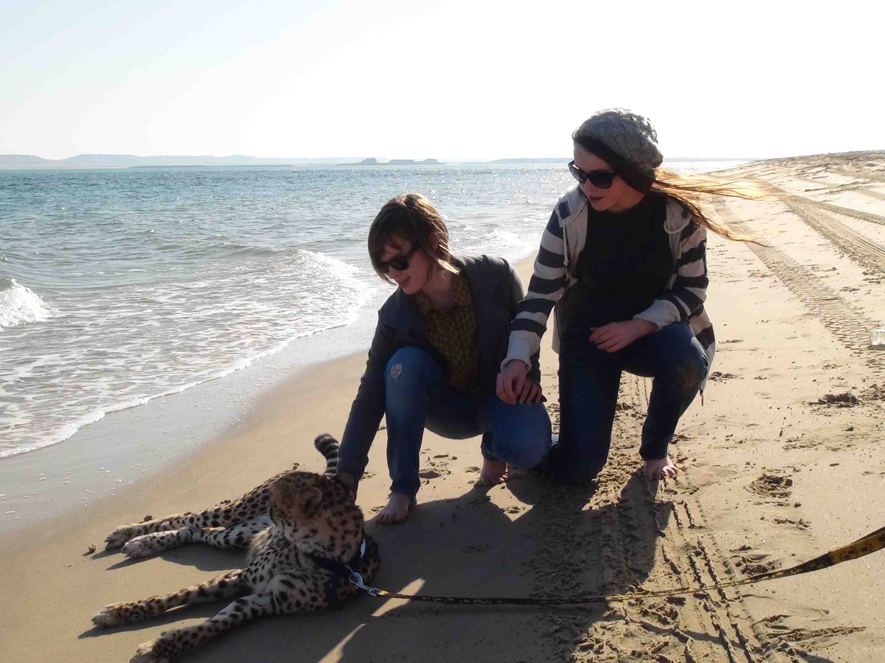 Hannah and her sister have a chance to pet a cheetah on the beach in Qatar.